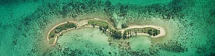 The-MesoAmerican-Barrier-Reef1